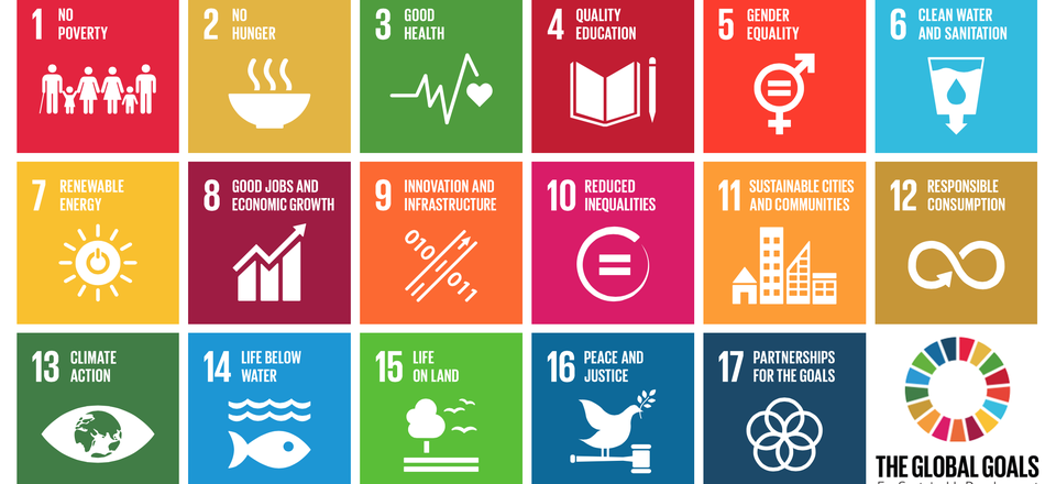 Global goals for sustainability